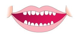 Primeros dientes del bebe 12 a 24 meses