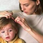 Tratamiento para piojos: remedios para eliminar piojos en los niños
